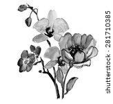 flowers . garland  watercolor... | Shutterstock . vector #281710385