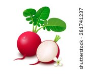 whole radishes with leaves ... | Shutterstock .eps vector #281741237