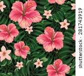 amazing tropical flower vector... | Shutterstock .eps vector #281743919