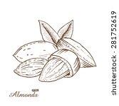 almonds. woodcut style. hand... | Shutterstock .eps vector #281752619