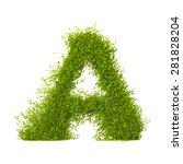 decorative nature vector letter ... | Shutterstock .eps vector #281828204