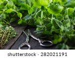 Fresh Herbs Cut In Home Garden...