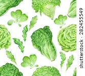 green salad leaves vector... | Shutterstock .eps vector #282455549