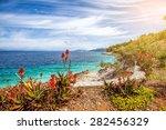 Flowers At Adriatic Sea Coast