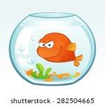 little goldfish  mean