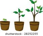 an illustration of three pot... | Shutterstock . vector #28252255