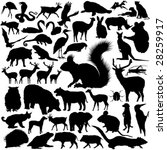 animal,ant,antelope,bat,bear,beaver,beetle,bittern,boar,bug,camel,clip,clipart,deer,eagle