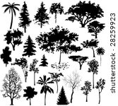 Detailed Vectoral Tree...
