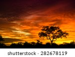 African Sunrise In The Kruger...