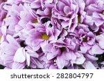 many purple flowers bouquet... | Shutterstock . vector #282804797