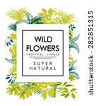 tropical print with slogan for... | Shutterstock .eps vector #282851315