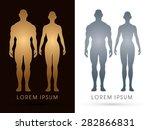 Постер, плакат: Male and female Anatomy