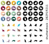 cat icon | Shutterstock .eps vector #282919211