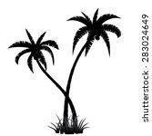 Black Palm Tree Silhouette On...