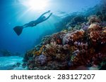 lady freediver gliding... | Shutterstock . vector #283127207