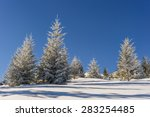 Majestic Winter Landscape With...