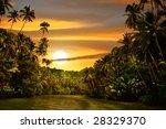 Rainforest River Cruise In...