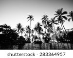 black and white color of... | Shutterstock . vector #283364957