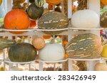 Pumpkin Harvest Season On The...