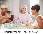 group of mature female friends... | Shutterstock . vector #283516064