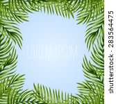 palm leaves background.... | Shutterstock .eps vector #283564475