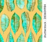 watercolor seamless pattern...   Shutterstock . vector #283604984