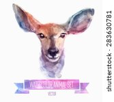 Vector Set Of Animals. Deer...