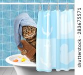 Stock photo funny cat taking a bath 283675571