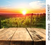 vineyard at sunset in the... | Shutterstock . vector #283819007