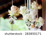 flowers in bulbs hang in a... | Shutterstock . vector #283850171