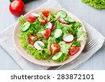 tomato and cucumber salad with... | Shutterstock . vector #283872101