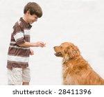 boy giving dog a reward | Shutterstock . vector #28411396