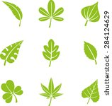 natural leafs icon set | Shutterstock .eps vector #284124629