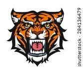tiger anger head.  vector... | Shutterstock .eps vector #284136479