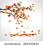 Autumn Branch With Falling...