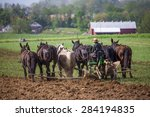 Small photo of Young amish boy operating a horse drawn plow in the fields of rural Lancaster County Pennsylvania.