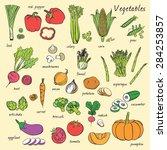 vector seamless vegetables set   Shutterstock .eps vector #284253857