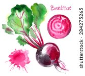 beet painted with watercolors... | Shutterstock . vector #284275265