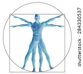 vitruvian human or man as a... | Shutterstock . vector #284330537