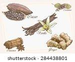 five isolated vector dessert... | Shutterstock .eps vector #284438801