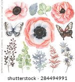 collection of watercolor floral ... | Shutterstock .eps vector #284494991
