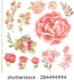 collection of watercolor floral ... | Shutterstock .eps vector #284494994