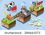 meet industriy stages. beef... | Shutterstock . vector #284661071