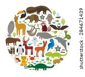 south america sloth anteater... | Shutterstock .eps vector #284671439