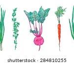 vector horizontal seamless... | Shutterstock .eps vector #284810255