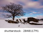 A Tree And Snow Covered Rocks...