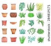 Watercolor houseplants,  plants succulents and pots set