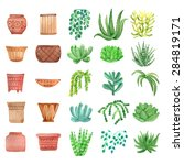 Watercolor Houseplants   Plant...