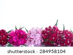 Bright Bouquet Of Carnations On ...