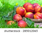 Ripe Nectarines On A Grass In...